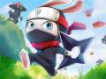 Pelit Ninja Rabbit